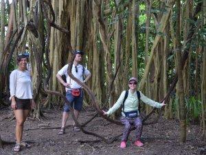 Behinderte im Dschungel