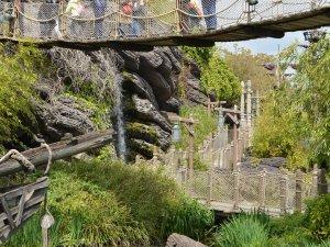 Disneyland behinderte Menschen