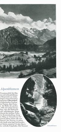 Ortsprospekt 1930 Seite 3