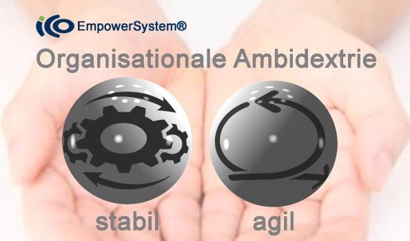 Organisationale Ambidextrie 3D