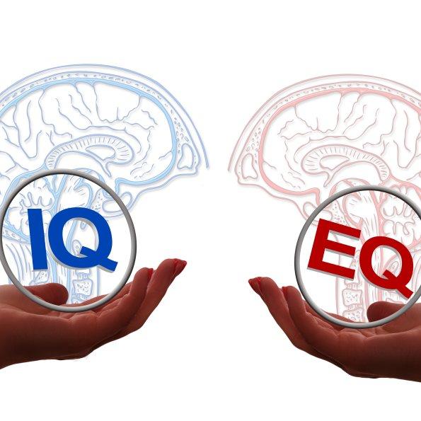 EQ IQ frei