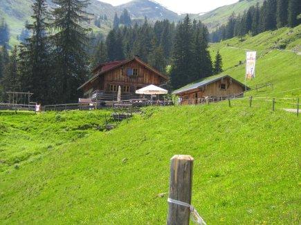 Alpe Bolgen  (2)