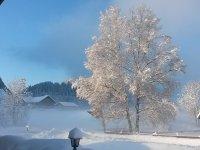 Ein Wintertraumtag