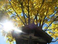 Herbststimmung (2)