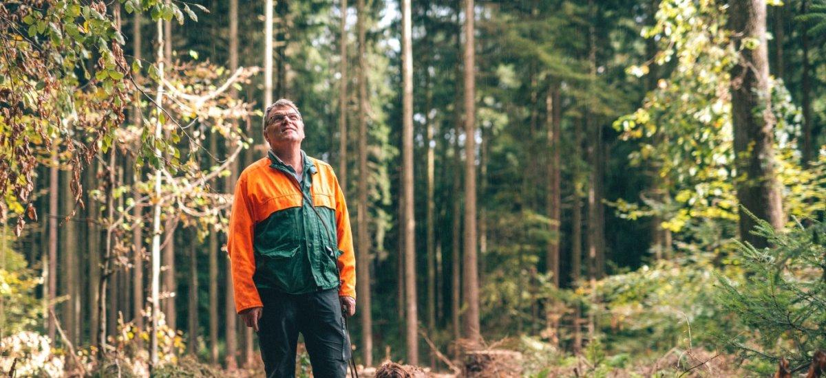 Mit Förster Rainer Fell unterwegs im Mittelwald Iphofen