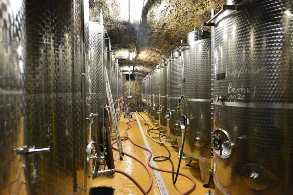 Der Wein reift in Edelstahltanks