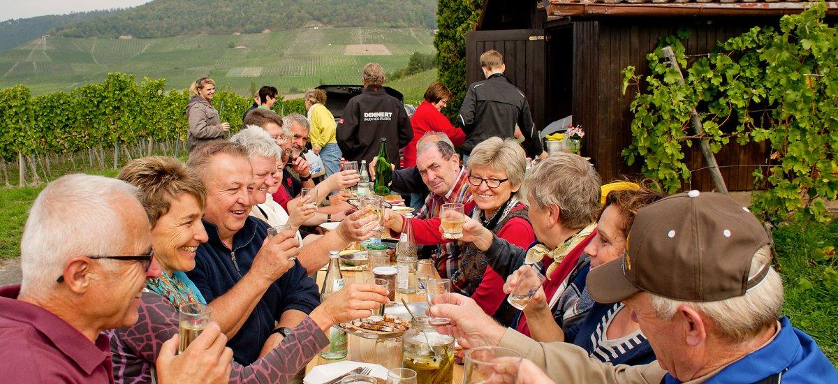 Weinprobe mitten in den Weinbergen