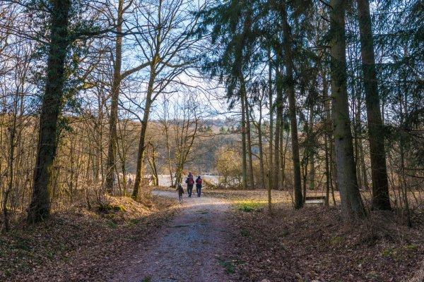 Wandern auf der Traumrunde Dornheim