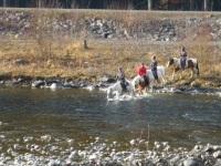 Mit unseren Pferden durch den Fluss...