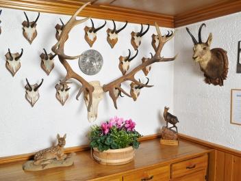 Jagdhaus Stillachtal - Ferienwohnungen