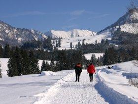 Winterwandern zum Sonthofer Hof