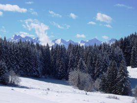 Gipfelblick Allgäuer Hauptkamm