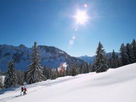 Winterwandern mit Sonne g