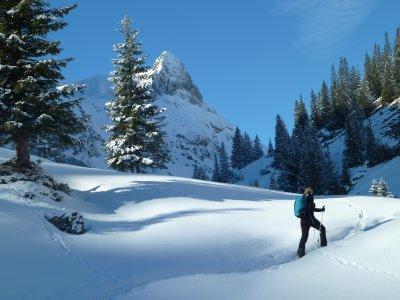 Schneeschuhtour im Kleinwalsertal
