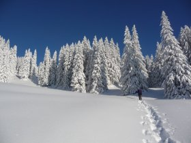 Schneeschuhtour im Allgäu