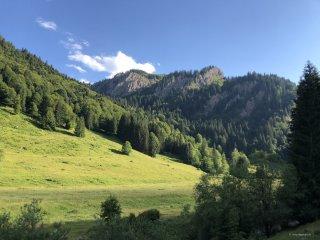 Durch das Autal in Richtung Alpe Scheidwang
