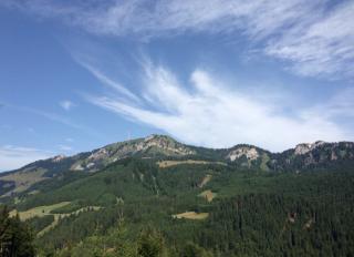 Durch den Berghofer Wald auf das Bildstöckle