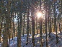 Ausstieg aus der Breitachklamm Richtung Alpe Dornach
