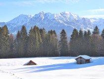 Die Wiesen bei der Alpe Dornach