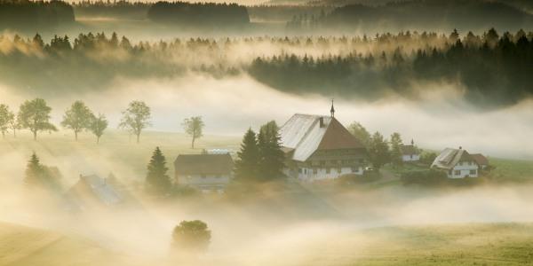 Schwarzwaldhof-im-Morgennebel