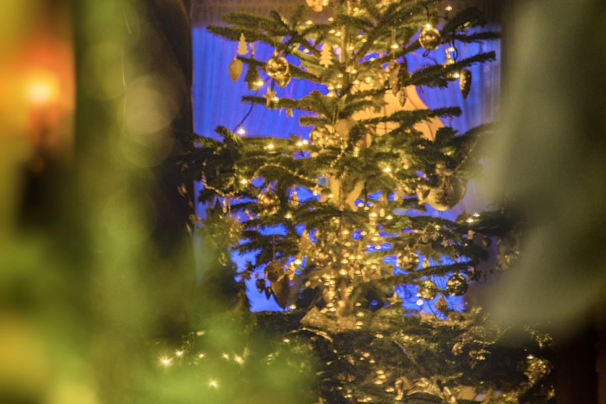 Kaisers Tanne Weihnachten 19