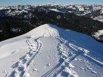 Schneeschuhtouren in Balderschwang