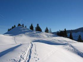 Auf Schneeschuhen durchs Tal