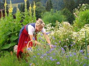 Kräuterwirtin Silvia im Garten