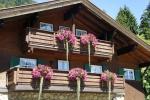 Ferienwohnung in Balderschwang
