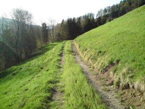 Der Weg ist das Ziel ...