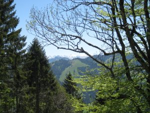 Blick auf die Oberstdorfer Berggipfel ...