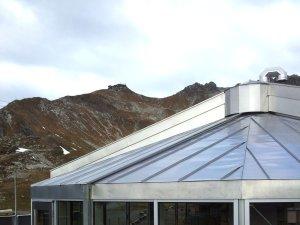 Gemsnest am Nebelhorn