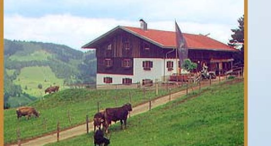Kuhschwand