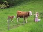 Kühe Spielplatz
