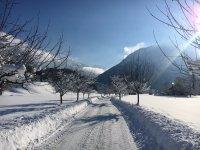 Winter in der Scheibenstrasse