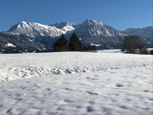 Winter Bolsterlang