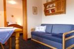 Wohnzimmer Soldanelle