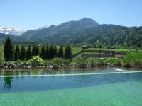 Sommerfrische an unserem Naturschwimmteich