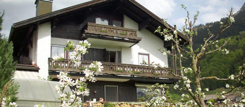 Landhaus Enzian im Frühling