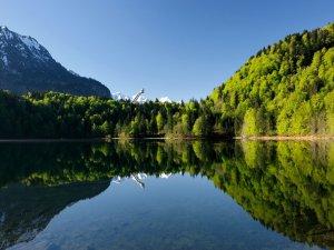 Monschau Freibergsee groß Frühling klein
