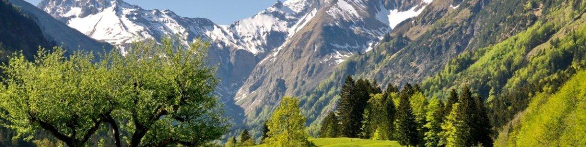 Blick zur Trettachspitze