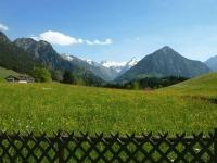 Sommer-Bergblick