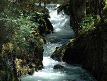 Wandern-kleinwalsertal-natur-stille-schwarzwasserbach