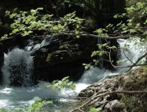 Wandern-natur-erholung-kleinwalsertal-sommer-naturbruecke