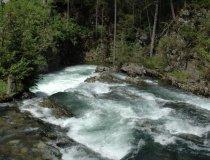 Wandern-natur-kleinwalsertal-schwarzwasserbach