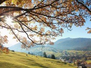 Es wird Herbst im KleinwalsertalFrank Drechsel (c) Frank Drechsel - Kleinwalsertal Tourismus eGen   Fotograf  Frank Drechsel