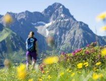Alpenrosen Wandern mit Blick zum Widderstein