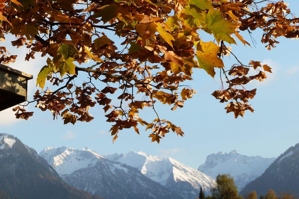 Herbstaussicht vom Landhaus Math