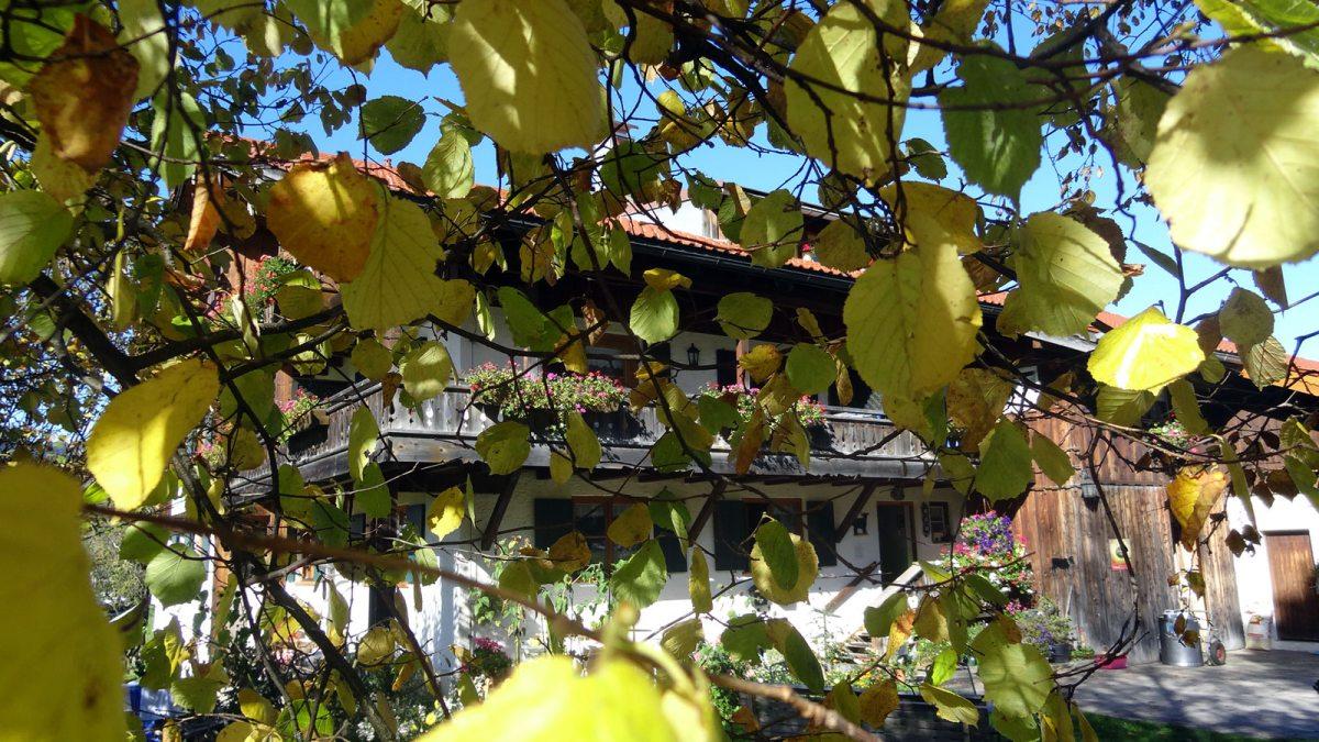 Landhaus Math im Herbst