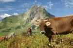 Tourismus Oberstdorf